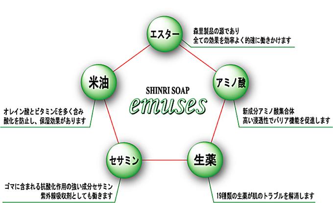 五つの主要成分説明